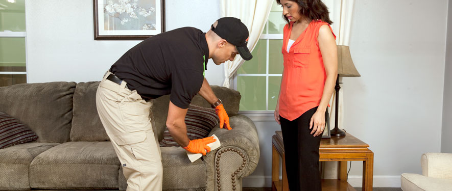 Shelton, CT carpet upholstery cleaning