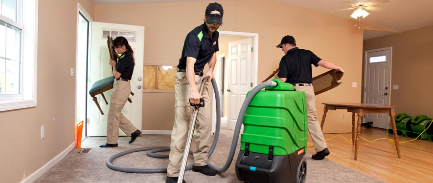 Shelton, CT cleaning services